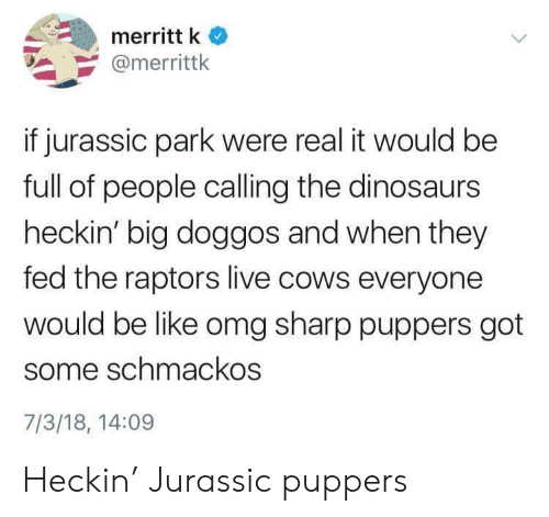 Be Like, Jurassic Park, and Omg: merritt k  @merrittk  if jurassic park were real it would be  full of people calling the dinosaurs  heckin' big doggos and when they  fed the raptors live cows everyone  would be like omg sharp puppers got  some schmackos  7/3/18, 14:09 Heckin' Jurassic puppers