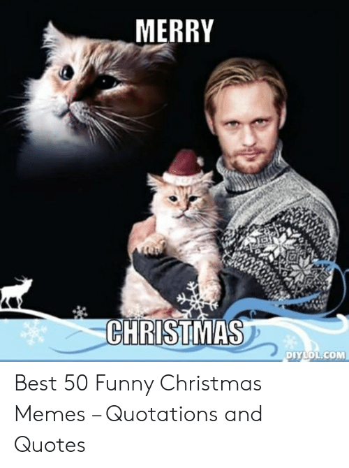 funny christmas memes: MERRY  CHRISTMAS  DIYLOL.COM Best 50 Funny Christmas Memes – Quotations and Quotes
