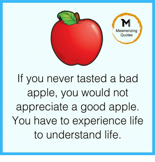 Appling: Mesmerizing  Quotes  If you never tasted a bad  apple, you would not  appreciate a good apple.  You have to experience life  to understand life