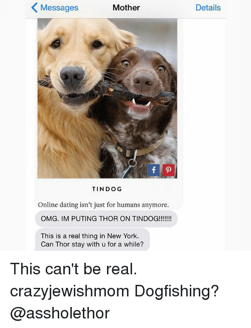 Puting: Messages  Mother  TINDOG  Online dating isn't just for humans anymore.  OMG. IM PUTING THOR ON TINDOG!!!!!!!  This is a real thing in New York.  Can Thor stay with u for a while?  Details This can't be real. crazyjewishmom Dogfishing? @assholethor