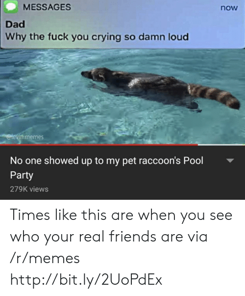 Real Friends: MESSAGES  now  Dad  Why the fuck you crying so damn loud  @levin.memes  No one showed up to my pet raccoon's Pool  Party  279K views Times like this are when you see who your real friends are via /r/memes http://bit.ly/2UoPdEx