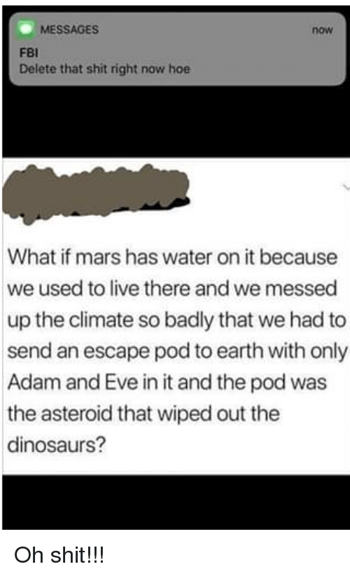 wiped: MESSAGES  now  FBI  Delete that shit right now hoe  What if mars has water on it because  we used to live there and we messed  up the climate so badly that we had to  send an escape pod to earth with only  Adam and Eve in it and the pod was  the asteroid that wiped out the  dinosaurs? Oh shit!!!