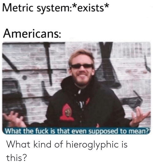 Fuck, Mean, and Metric: Metric system:*exists*  Americans:  What the fuck is that even supposed to mean? What kind of hieroglyphic is this?