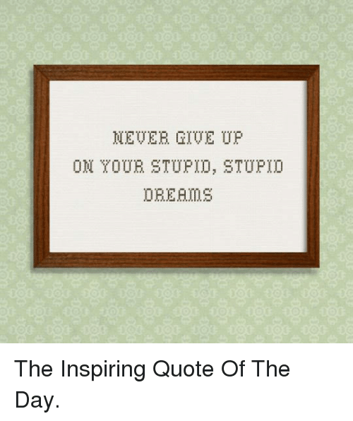 Quote Of The Day: MEVER GIVE UP  OM OUE STUPID, STUPI0 <p>The Inspiring Quote Of The Day.</p>