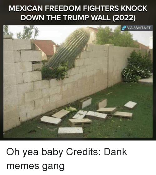 Meme Gang: MEXICAN FREEDOM FIGHTERS KNOCK  DOWN THE TRUMP WALL (2022)  VIA, 8sHIT NET Oh yea baby  Credits: Dank memes gang