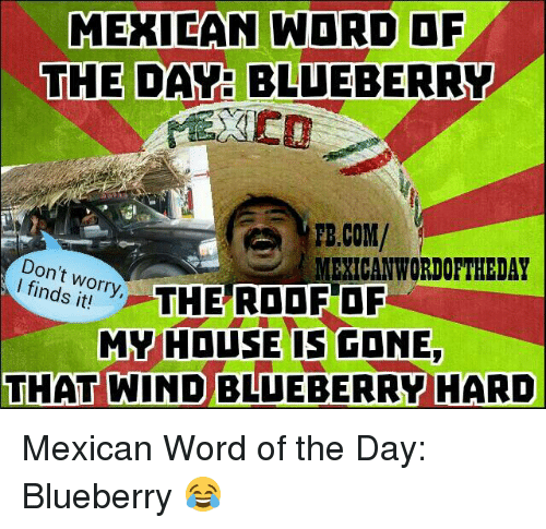 Mexican Wordoftheday: MEXICAN WORD OF  THE DAY: BLUEBERRY  PB.COM/  MEXICAN WORDOFTHEDAY  Don't worry,  finds THE ROOF OF  MY HOUSE IS CONE  THAT WIND BLUEBERRY HARD Mexican Word of the Day: Blueberry 😂