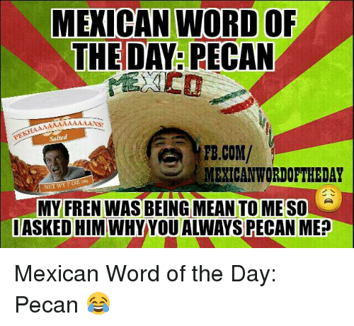 Mexican Wordoftheday: MEXICAN WORD OF  THE DAY: PECAN  NS!  Salted  TE.COM/  MEXICAN WORDOFTHEDAY  NET W17O  MY FREN WAS BEING MEAN TO MESO  I ASKED HIM Mexican Word of the Day: Pecan 😂