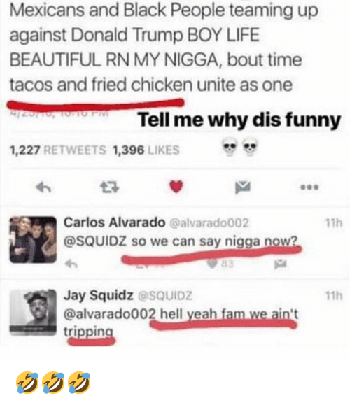 Beautiful, Donald Trump, and Fam: Mexicans and Black People teaming up  against Donald Trump BOY LIFE  BEAUTIFUL RN MY NIGGA, bout time  tacos and fried chicken unite as one  Tell me why dis funny  1,227 RETWEETS 1,396 LIKES  わ  Carlos Alvarado @alvarado002  @SQUIDZ so we can say nigga now?  11h  Jay Squidz @sQUIDZ  @alvarado002 hell yeah fam we ain't  trippin  11h 🤣🤣🤣
