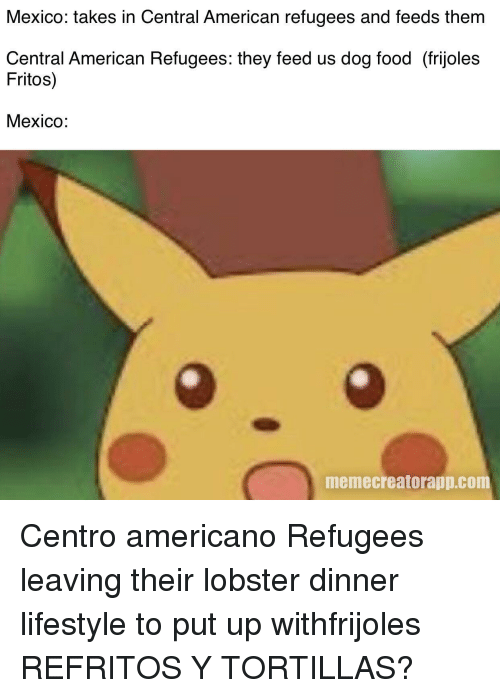 Food, Fritos, and American: Mexico: takes in Central American refugees and feeds them  Central American Refugees: they feed us dog food (frijoles  Fritos)  Mexico:  memecreatorapp.com Centro americano Refugees leaving their lobster dinner lifestyle to put up withfrijoles REFRITOS Y TORTILLAS?
