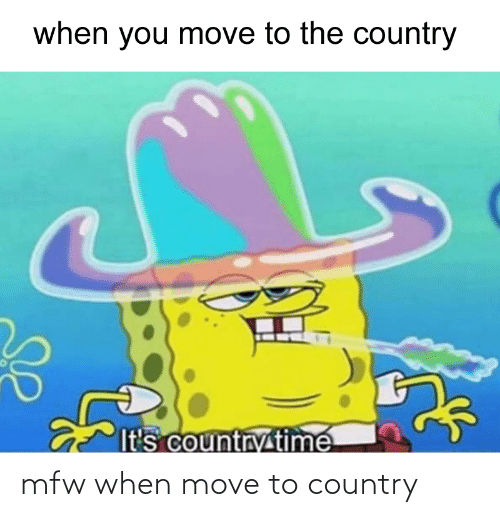 Move To: mfw when move to country