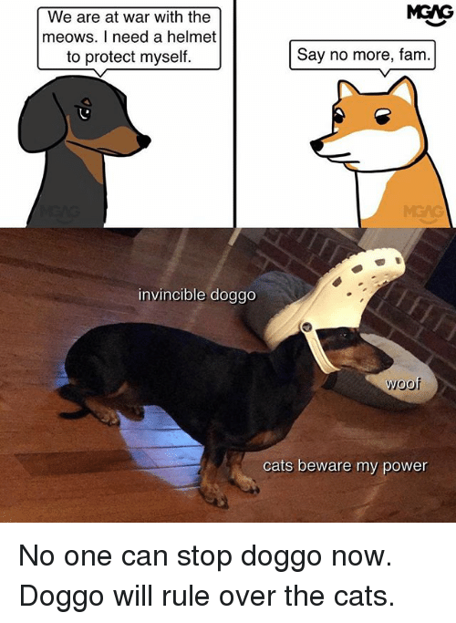 Woofe: MGAG  We are at war with the  meows. I need a helmet  to protect myself.  Say no more, fam.  MEAG  invincible doggo  woof  cats beware my power No one can stop doggo now. Doggo will rule over the cats.