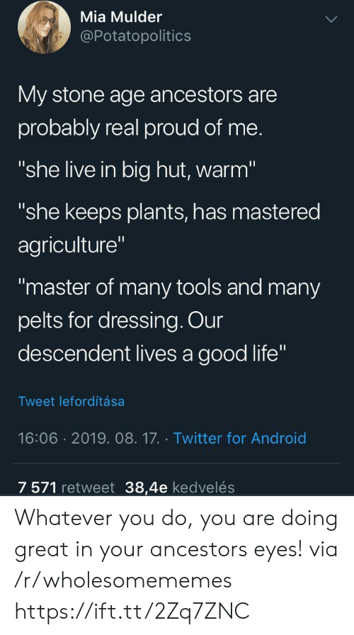 "Are Doing: Mia Mulder  @Potatopolitics  My stone age ancestors are  probably real proud of me.  ""she live in big hut, warm""  ""she keeps plants, has mastered  agriculture""  ""master of many tools and many  pelts for dressing. Our  descendent lives a good life""  Tweet lefordítása  16:06 2019. 08.17. Twitter for Android  7 571 retweet 38,4e kedvelés Whatever you do, you are doing great in your ancestors eyes! via /r/wholesomememes https://ift.tt/2Zq7ZNC"