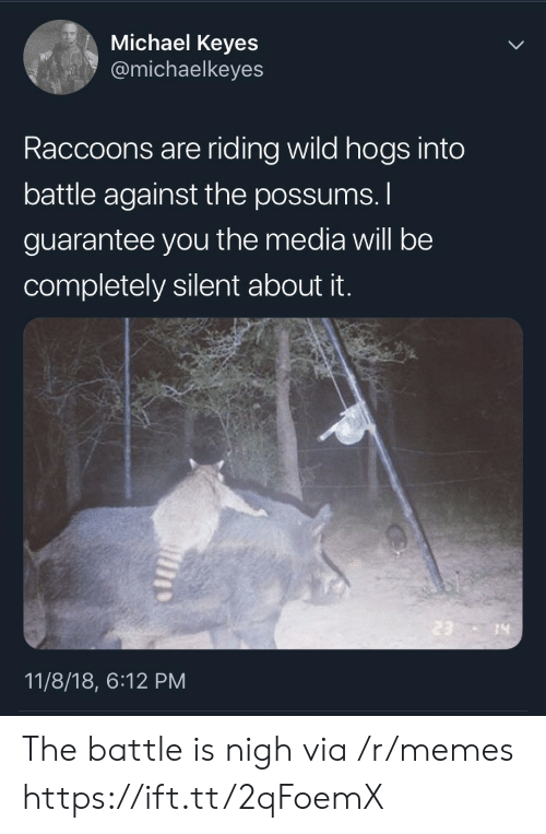 raccoons: Michael Keyes  @michaelkeyes  Raccoons are riding wild hogs into  battle against the possums.  guarantee you the media will be  completely silent about it.  14  11/8/18, 6:12 PM The battle is nigh via /r/memes https://ift.tt/2qFoemX