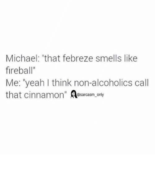 "febreze: Michael: ""that febreze smells like  fireball""  Me: ""yeah I think non-alcoholics call  that cinnamon  @sarcasm only ⠀"