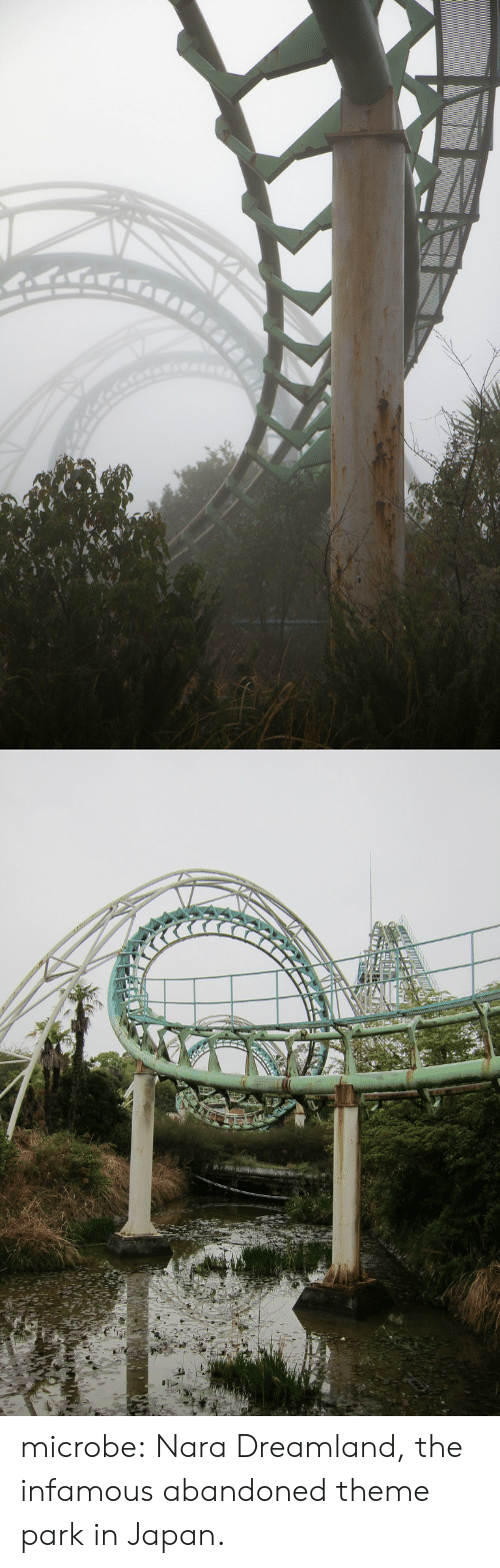 theme park: microbe: Nara Dreamland, the infamous abandoned theme park in Japan.