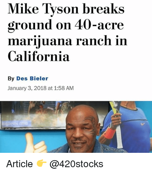 acre: Mike Tyson breaks  ground on 40-acre  marinluana ranch in  California  By Des Bieler  January 3, 2018 at 1:58 AM Article 👉 @420stocks