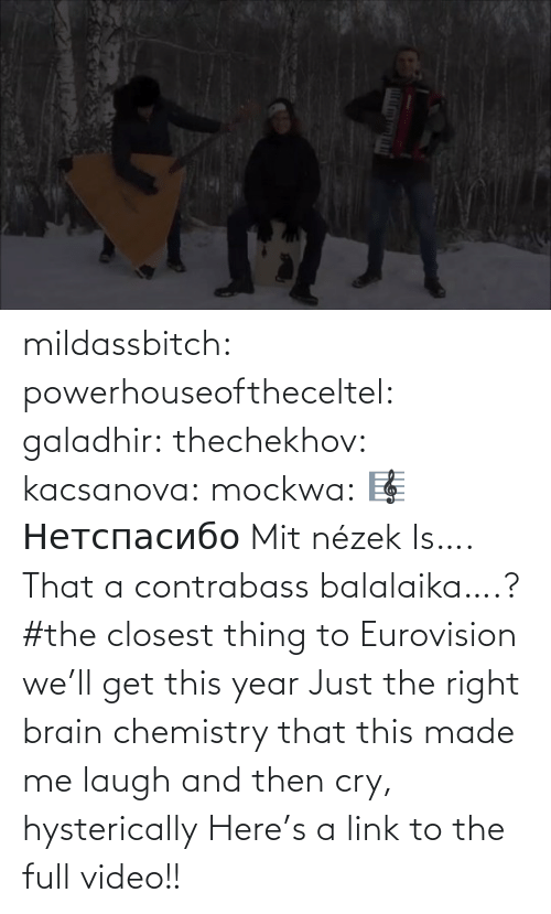 opaque: mildassbitch: powerhouseoftheceltel:  galadhir:  thechekhov:  kacsanova:  mockwa:    🎼  Нетспасибо  Mit nézek    Is…. That a contrabass balalaika….?    #the closest thing to Eurovision we'll get this year    Just the right brain chemistry that this made me laugh and then cry, hysterically    Here's a link to the full video!!