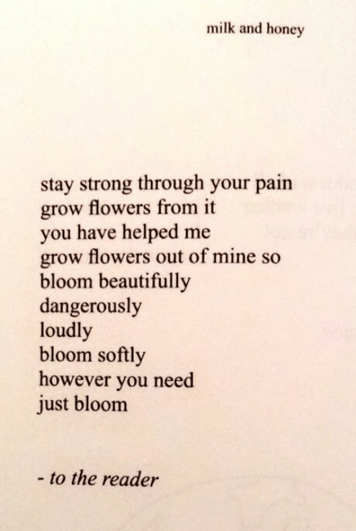 Dangerously: milk and honey  stay strong through your pain  grow flowers from it  you have helped me  grow flowers out of mine so  bloom beautifully  dangerously  loudl  bloom softly  however you need  just bloom  - to the reader