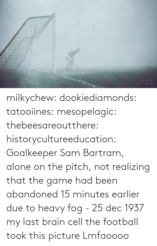 Brain: milkychew: dookiediamonds:  tatooiines:   mesopelagic:  thebeesareoutthere:  historycultureeducation: Goalkeeper Sam Bartram, alone on the pitch, not realizing that the game had been abandoned 15 minutes earlier due to heavy fog - 25 dec 1937 my last brain cell   the football took this picture    Lmfaoooo