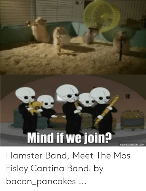 Eisley Cantina: Mind if we join?  MEMECENTER.COM Hamster Band, Meet The Mos Eisley Cantina Band! by bacon_pancakes ...