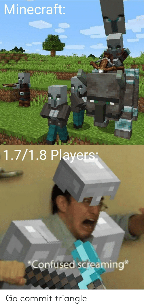 Confused, Minecraft, and Triangle: Minecraft:  1.7/1.8 Players  Confused screaming* Go commit triangle