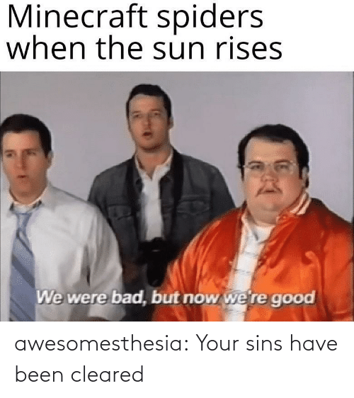 minecraft: Minecraft spiders  when the sun rises  We were bad, but now we're good awesomesthesia:  Your sins have been cleared