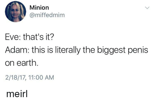 Minion: Minion  @miffedmim  Eve: that's it?  Adam: this is literally the biggest penis  on earth.  2/18/17, 11:00 AM meirl