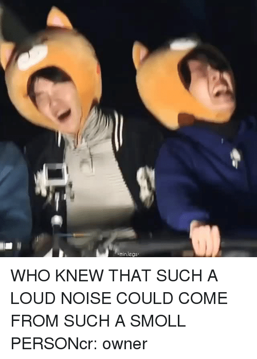 Who, Person, and Noise: minlegs WHO KNEW THAT SUCH A LOUD NOISE COULD COME FROM SUCH A SMOLL PERSONcr: owner