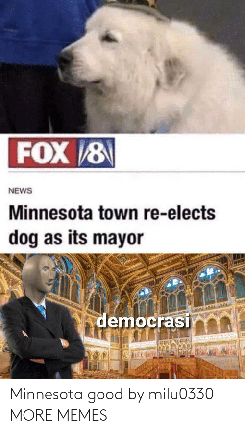 Good: Minnesota good by milu0330 MORE MEMES