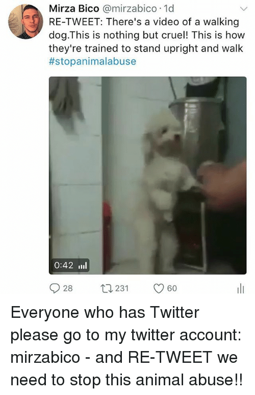 Animal Abuse: Mirza Bico  @mirza bico 1d  RE-TWEET: There's a video of a walking  dog This is nothing but cruel! This is how  they're trained to stand upright and walk  #stopanimalabuse  0:42 III  28  t 231  60  S Everyone who has Twitter please go to my twitter account: mirzabico - and RE-TWEET we need to stop this animal abuse!!