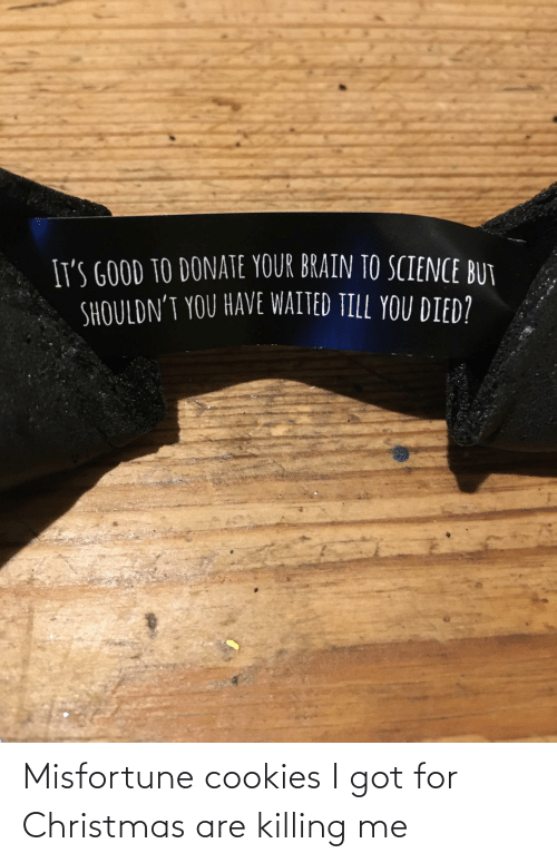 killing me: Misfortune cookies I got for Christmas are killing me
