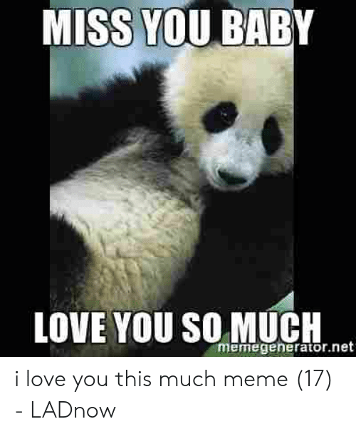 Love, Meme, and I Love You: MISS YOU BABY  LOVE YOU SO MUCH  memegenerator.net i love you this much meme (17) - LADnow