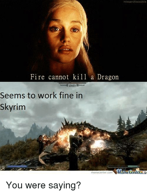 You Were Saying: missarchiecookie  Fire cannot kill a Dragon  Seems to work fine in  Skyrim  memecenter-com You were saying?