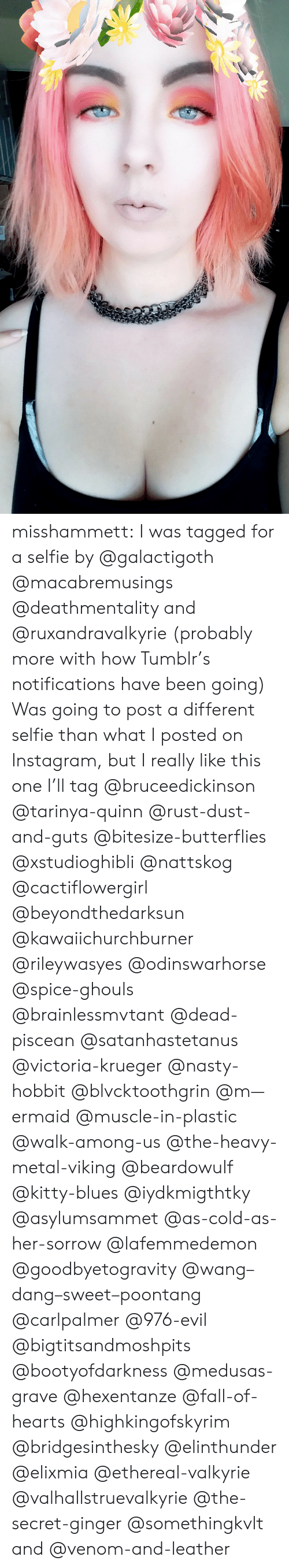 Krueger: misshammett:  I was tagged for a selfie by @galactigoth @macabremusings @deathmentality and @ruxandravalkyrie (probably more with how Tumblr's notifications have been going) Was going to post a different selfie than what I posted on Instagram, but I really like this one  I'll tag @bruceedickinson @tarinya-quinn @rust-dust-and-guts @bitesize-butterflies @xstudioghibli @nattskog @cactiflowergirl @beyondthedarksun @kawaiichurchburner @rileywasyes @odinswarhorse @spice-ghouls @brainlessmvtant @dead-piscean @satanhastetanus @victoria-krueger @nasty-hobbit @blvcktoothgrin @m—ermaid @muscle-in-plastic @walk-among-us @the-heavy-metal-viking @beardowulf @kitty-blues @iydkmigthtky @asylumsammet @as-cold-as-her-sorrow @lafemmedemon @goodbyetogravity @wang–dang–sweet–poontang @carlpalmer @976-evil @bigtitsandmoshpits @bootyofdarkness @medusas-grave @hexentanze @fall-of-hearts @highkingofskyrim @bridgesinthesky @elinthunder @elixmia @ethereal-valkyrie @valhallstruevalkyrie @the-secret-ginger @somethingkvlt and @venom-and-leather