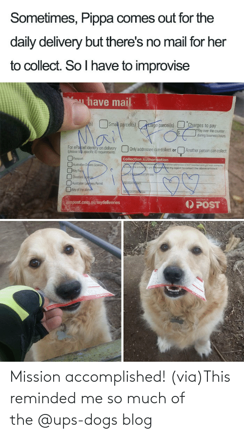 Facebook: Mission accomplished! (via)This reminded me so much of the @ups-dogs blog