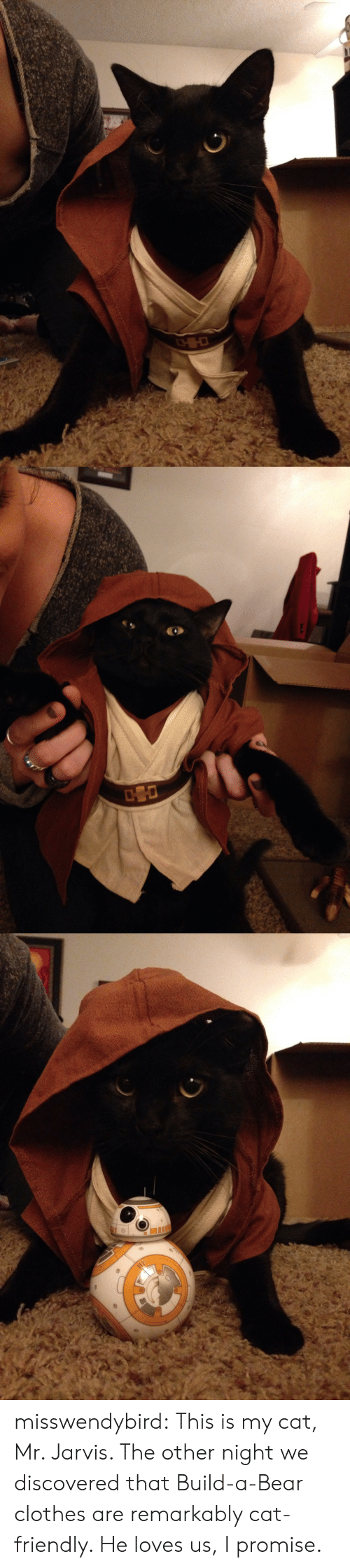 Build a Bear: misswendybird: This is my cat, Mr. Jarvis.  The other night we discovered that Build-a-Bear clothes are remarkably cat-friendly.  He loves us, I promise.