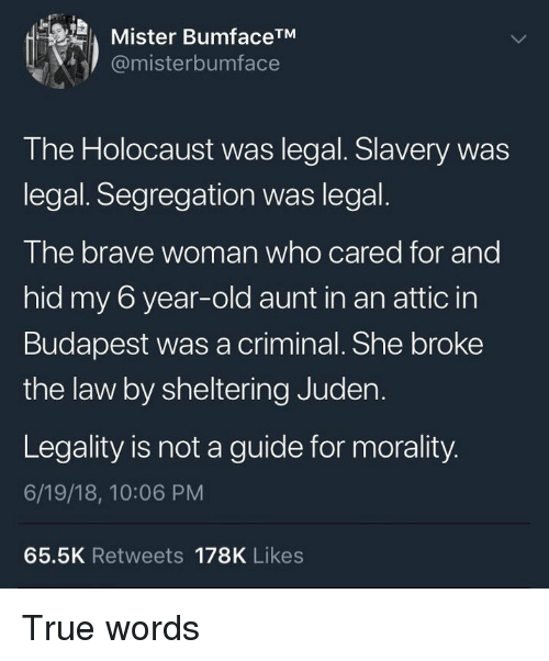 True, Brave, and Holocaust: Mister BumfaceTM  @misterbumface  The Holocaust was legal. Slavery was  legal. Segregation was legal.  The brave woman who cared for and  hid my 6 year-old aunt in an attic in  Budapest was a criminal. She broke  the law by sheltering Juden.  Legality is not a guide for morality  6/19/18, 10:06 PM  65.5K Retweets 178K Likes True words