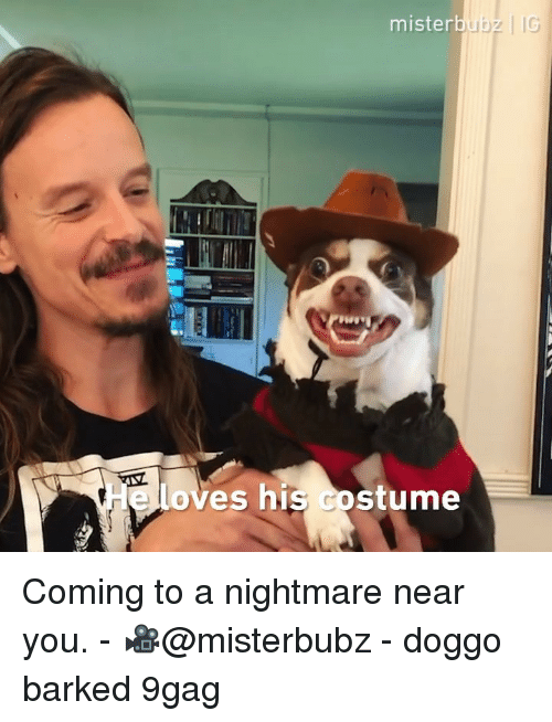 A Nightmare: mister  loves his costume Coming to a nightmare near you. - 🎥@misterbubz - doggo barked 9gag