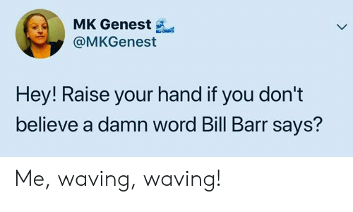 Memes, Word, and 🤖: MK Genest  @MKGenest  Hey! Raise your hand if you don't  believe a damn word Bill Barr says? Me, waving, waving!
