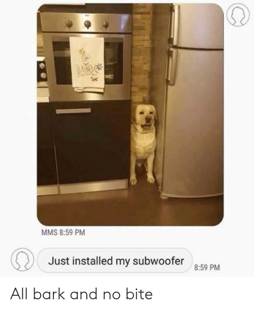 Mms, All, and Bite: MMS 8:59 PM  Just installed my subwoofer  8:59 PM All bark and no bite