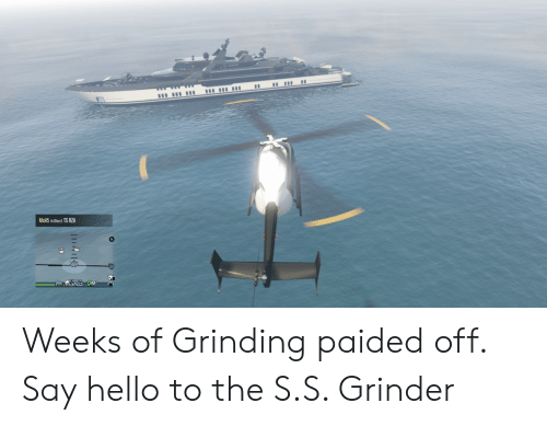 Hello, Grinder, and Rza: MOA5 killed TS RZA Weeks of Grinding paided off. Say hello to the S.S. Grinder