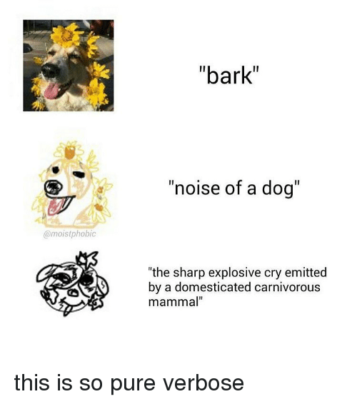 """carnivorous: @moist phobic  """"bark""""  """"noise of a dog  the sharp explosive cry emitted  by a domesticated carnivorous  mammal"""" this is so pure verbose"""