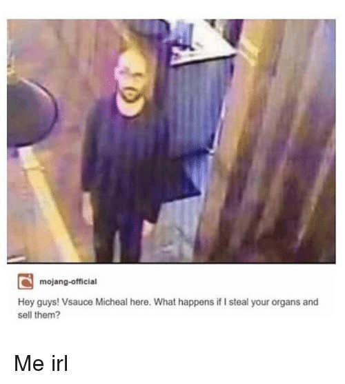Irl, Me IRL, and Them: mojang-official  Hey guys! Vsauce Micheal here. What happens if I steal your organs and  sell them? Me irl