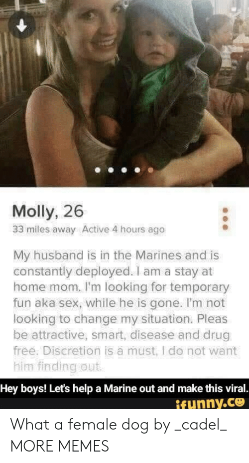 marine: Molly, 26  33 miles away Active 4 hours ago  My husband is in the Marines and is  constantly deployed. I am a stay at  home mom. I'm looking for temporary  fun aka sex, while he is gone. I'm not  looking to change my situation. Pleas  be attractive, smart, disease and drug  free. Discretion is a must, I do not want  him finding out  Hey boys! Let's help a Marine out and make this viral.  ifunny.co What a female dog by _cadel_ MORE MEMES