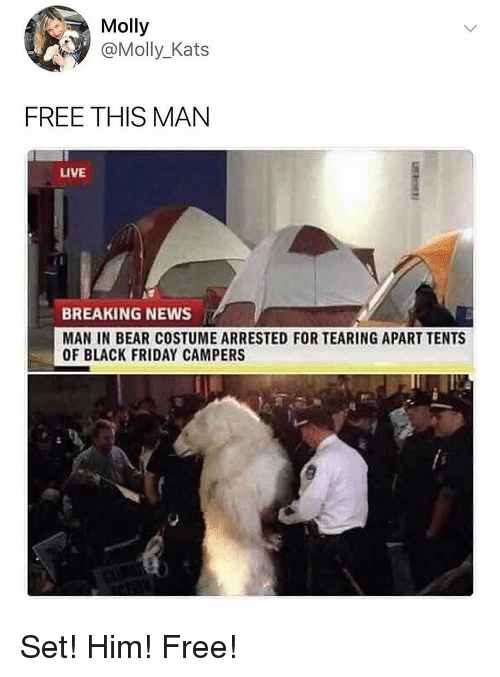 Black Friday, Friday, and Memes: Molly  @Molly_Kats  FREE THIS MAN  LIVE  BREAKING NEWS  MAN IN BEAR COSTUME ARRESTED FOR TEARING APART TENTS  OF BLACK FRIDAY CAMPERS Set! Him! Free!