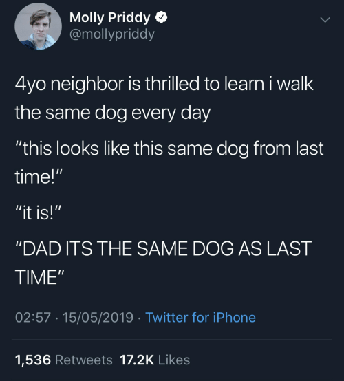 """molly: Molly Priddy  @mollypriddy  4yo neighbor is thrilled to learn i walk  the same dog every day  """"this looks like this same dog from last  time!""""  """"it is!""""  'DAD ITS THE SAME DOG AS LAST  TIME""""  02:57 15/05/2019 Twitter for iPhone  1,536 Retweets 17.2K Likes"""