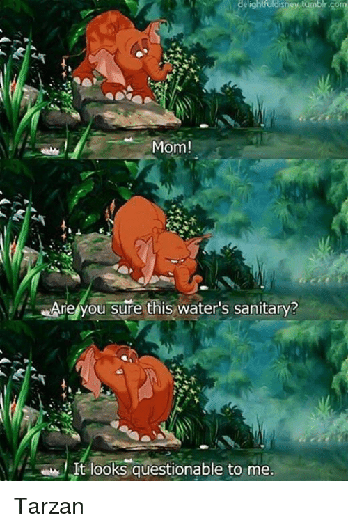 Tarzan: Mom!  Are you sure this water's sanitary?  It looks questionable to me. Tarzan