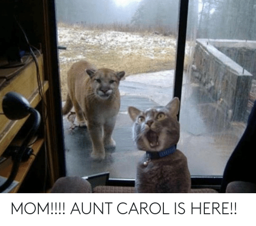 Mom, Carol, and Aunt: MOM!!!! AUNT CAROL IS HERE!!