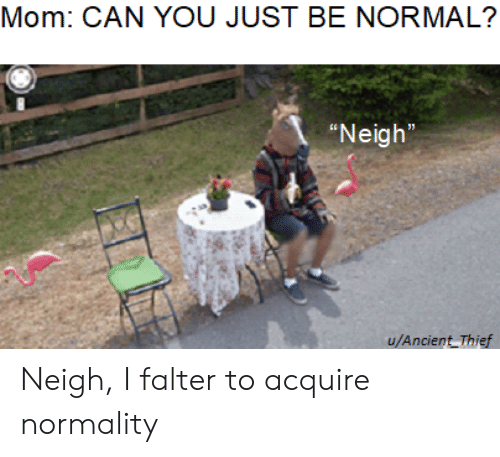 """Reddit, Ancient, and Mom: Mom: CAN YOU JUST BE NORMAL?  """"Neigh""""  u/Ancient Thief Neigh, I falter to acquire normality"""