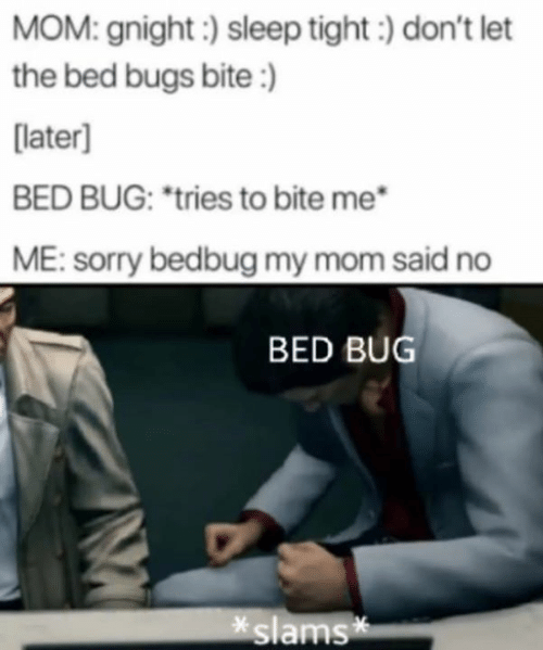 """Slams: MOM: gnight:) sleep tight) don't let  the bed bugs bite:)  [later]  BED BUG: """"tries to bite me  ME: sorry bedbug my mom said no  BED BUG  slams*"""